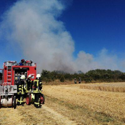 Flächenbrand beim Stockacherhölzle Bild: Feuerwehr Eigeltingen