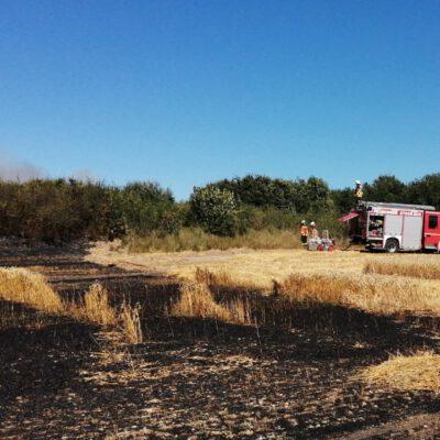 Brandbeginn im Weizenfeld Bild: Feuerwehr Eigeltingen