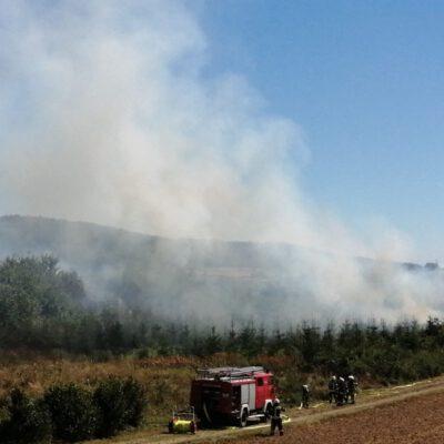 Starke Rauchentwicklung Bild: Feuerwehr Eigeltingen