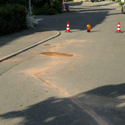 Ausgelaufene Betriebsstoffe / Bild: Feuerwehr Stockach